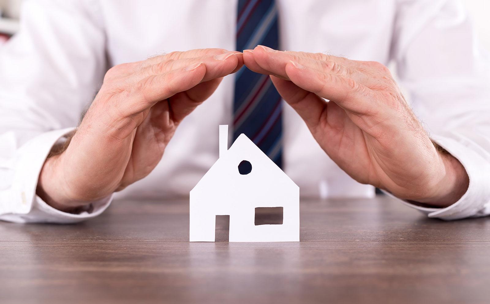 assurance habitation colocation